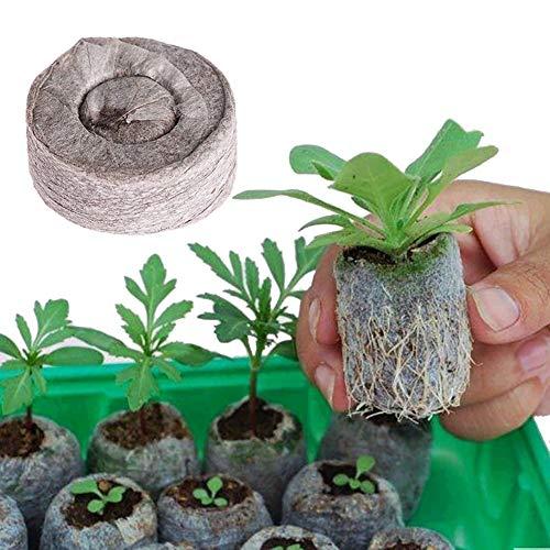 100 Count Jiffy Peat, Boden Pellets Samen Startstopfen 30MM für das Pflanzen von Gärten im Innenbereich (1,18 Zoll x 1,18 Zoll)