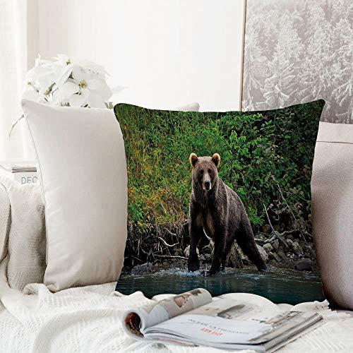 Yuxiang Kissenhülle Super Weich Home Decoration,Grizzly Braunbär im See Alaska unberührten Wald Dschungel Wildlife Image dekorativ, grün braun blau,Pillowcase Sofakissen für Wohnzimmer Sofa Bed