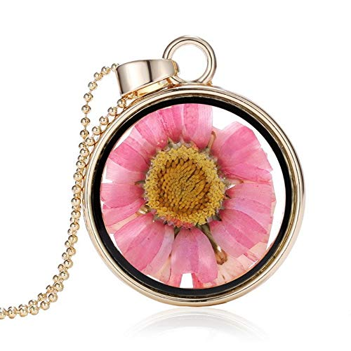 Dfgh Glasbedels Hanger Collier Droge Bloem Real Dry Flower Ronde Medaillon Ketting Gouden Ketting Collier for vrouwen Sieraden Fashion (Metal Color : Sunflower lockets)