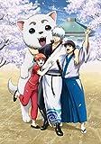 銀魂 銀祭り2019(仮)(初回仕様限定版) [Blu-ray]