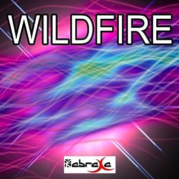 Wildfire - Single