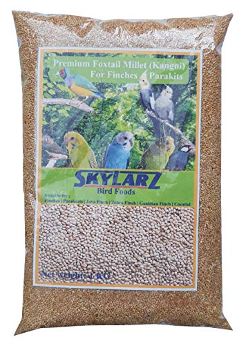 Happy Tails Kangni Seed Bird Food, 1 Kg (Brown)