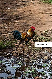 Rooster: Notebook with Animals for Kids, Notebook for Coloring Drawing and Writing (Realistic Colors, 110 Pages, Unlined, 6 x 9)(Animal Glossy Notebook)