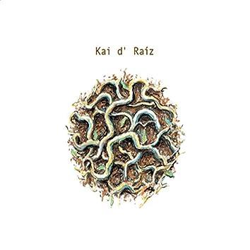 Kai D' Raiz