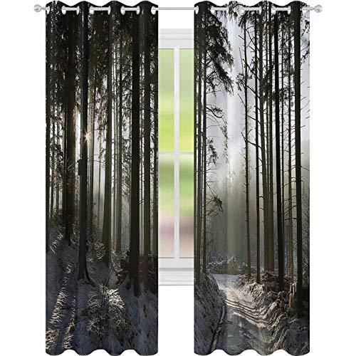 jinguizi Cortina opaca para ventana de invierno, camino de la tierra, bosque oscuro profundo W42 x L72 para decoración de niños