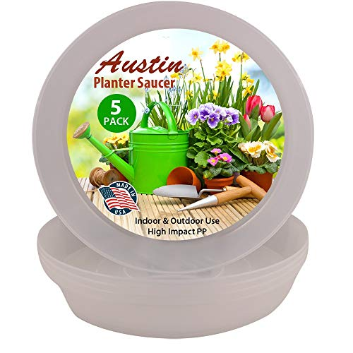 Austin Container Saucers Clear Polypropylene