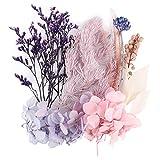 UFLF Flores Preservadas Secas Naturales Variadas Plantas Secas Flores para Regalos Navidad Decoración Vela Resina DIY Manualidad Artesanía Bricolaje