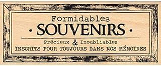 Florilèges Design FG115042 Tampon Scrapbooking Cadre Souvenirs pour Toujours, Beige