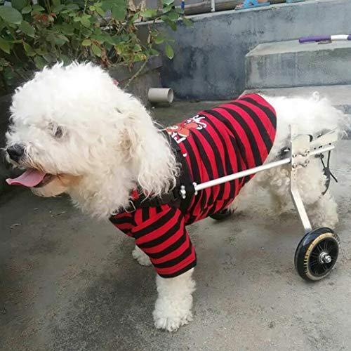 AMYAL Hond rolstoel, Hond Rolstoel Mobility Harnas Hond Ondersteuning Rolstoel voor Achterbenen Verstelbare 2 Wiel Hind Been Rehabilitatie, Hond Mobility Harnas, XXS