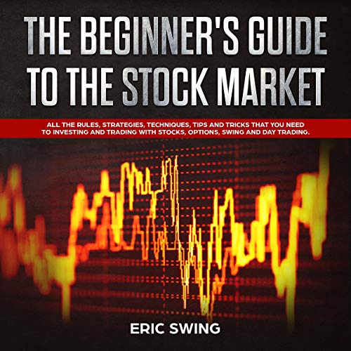 The Beginner's Guide to the Stock Market cover art