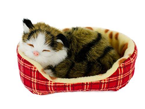 Teddys Rothenburg Katze im Körbchen, 14 cm, braun getigert, mit Stimme, Plüschtier, Plüschkatze