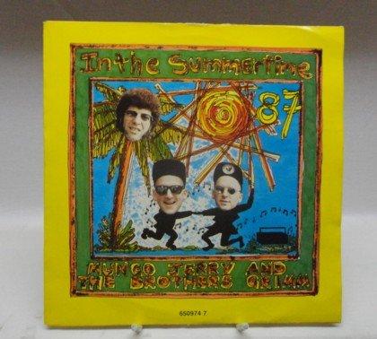 In the Summertime / Got a Job : Vinyl Single ;