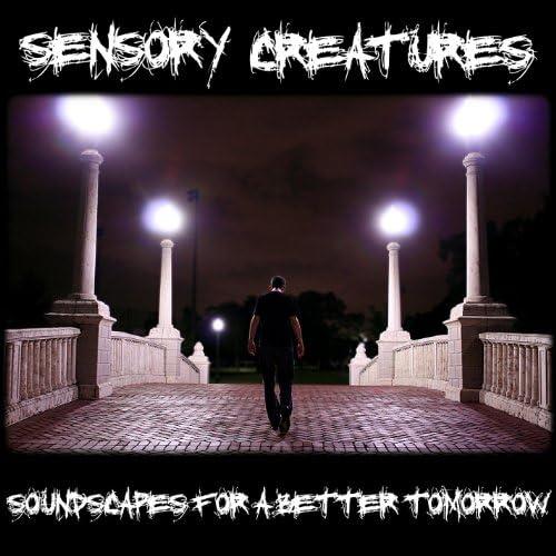 Sensory Creatures
