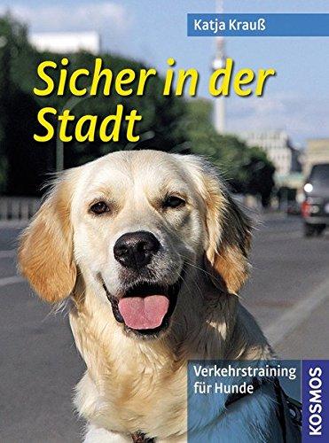 Sicher in der Stadt: Verkehrstraining für Hunde