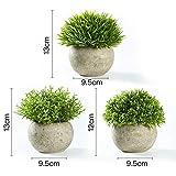 Jobary Set mit 3 künstlichen grünen Gras Pflanzen in grauen Töpfen, kleine dekorative Faux Plastik Pflanzen, ideal für Heim Büro Bad Küche und Outdoor Dekoration - 7