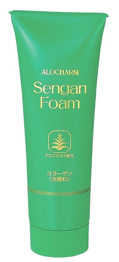 かすれた摂氏度独創的アロチャーム 洗顔フォーム 120g
