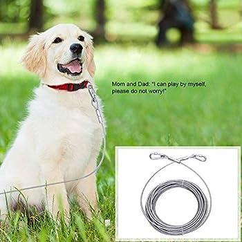 Tresbro Câbles d'attache Laisse Câble Laisse chaîne en métal pour Chien Pet Traction Corde pour Chiot Medium Chiens de Grande Taille jusqu'à 100 KG (15M)