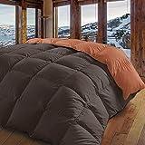 Energy Colors Textil-Hogar - Alpin - Edredón Nórdico Liso Invierno Alta Categoría Medida 180 x 260 cm Aprox (Cama 90 y 105)