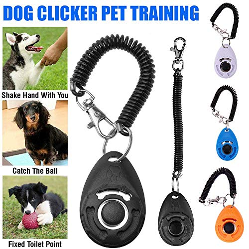 Stainless Steel Training Dog Whistle Portable Stop Barking Device Sound Repeller With Ring Universal Pet Supplies