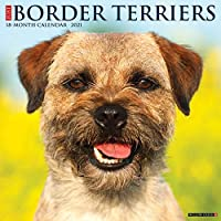 Border Terriers 2021 Calendar
