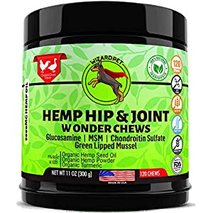 WonderPet Care Hemp Hip & Joint Supplement for Dogs Chondroitin Glucosamine MSM Hemp Turmeric | Extra Strength Formula for Arthritis Pain Relief & Mobility | 120 Soft Chews (Packaging May Vary)