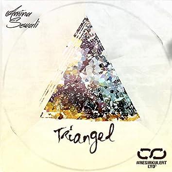 Triangel (Timbuktu Cover)