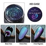 5ml Cat Eye Gel Nagellack 9D Effekt Magnetic Gel Maniküre Dekoration Kit