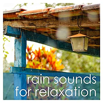 16 Ambient Meditation and Deep Sleep Rain Sounds