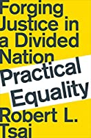 Practical Equality: Forging Justice in a Divided Nation