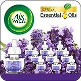 Generic Essential Oil Lavenders - Best Reviews Guide