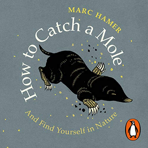 How to Catch a Mole cover art