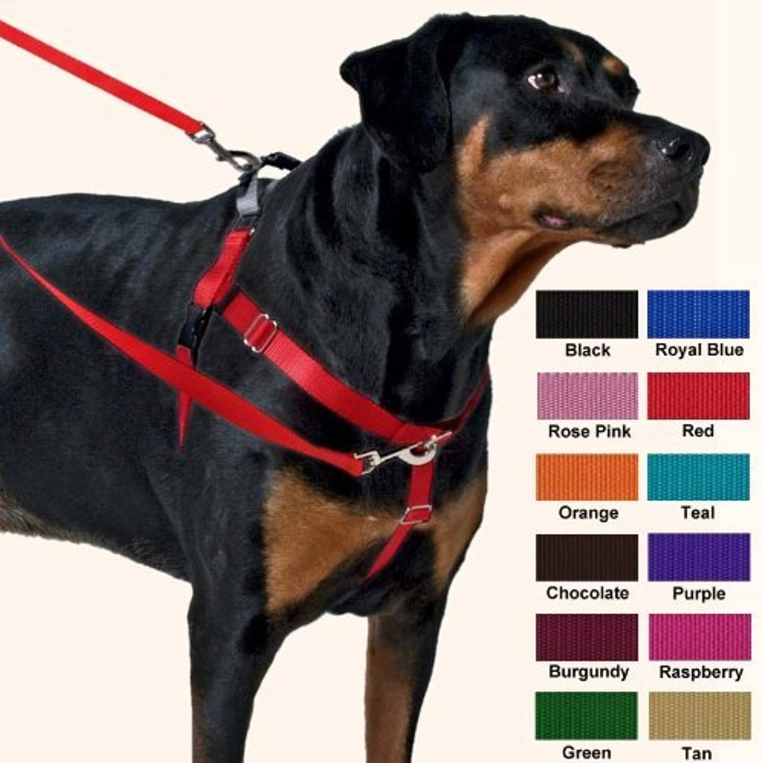 Freedom NoPull Harness 1 Inch Width Large Purple by Wiggles Wags Whiskers