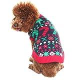 Maglione di Natale per cani
