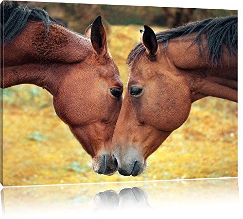 zwei schmusende Pferde, Format: 100x70 auf Leinwand, XXL riesige Bilder fertig gerahmt mit Keilrahmen, Kunstdruck auf Wandbild mit Rahmen, günstiger als Gemälde oder...