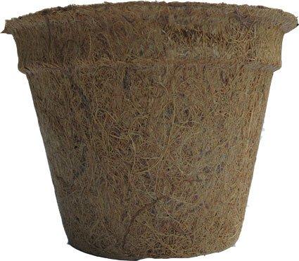 Pots à plantes en fibre de coco 1,0 litres (hauteur 10 cm / Ø au dessus de 16 cm), paquet de 100 (EUR 1,51 / pièce), pots à cocon, pots à semences, pots à semis, matériau naturel