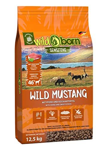 Wildborn Wild Mustang 500g getreidefreies Hundefutter mit Pferdefleisch, Süßkartoffel & Aroniabeeren | Monoproteinprodukt auch für Allergiker geeignet