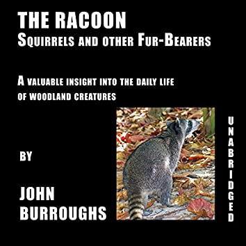 The Racoon (Unabridged), a valuable insight into the daily life of woodland creatures, by John Burroughs