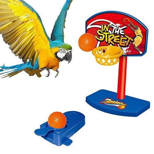 Ruiqas 5pcs balles Pet Birds Chew Toy, Cerceau de Basket-Ball avec des Accessoires, Balle, Base, Jouet d'amusement de Formation Perroquet (Couleur aléatoire)