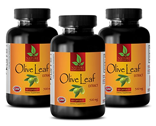 Weight Management Capsules - Natural Olive Leaf Extract 500MG - Best antioxidant - 3 Bottle (180 Capsules)