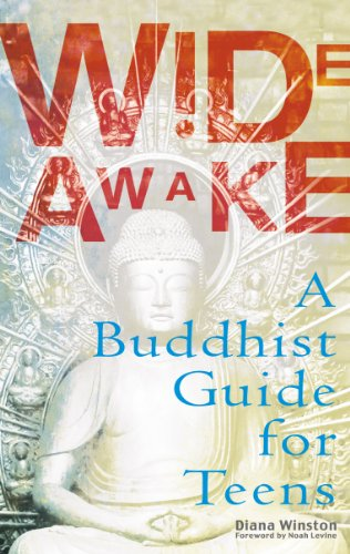 Wide Awake: Buddhism for the New Generation (English Edition)