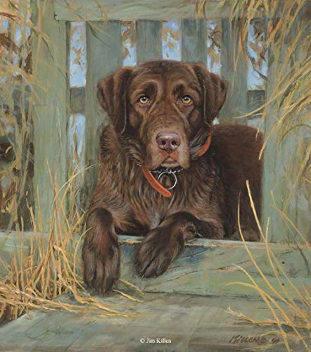 wojinbao DIY Digitale Malerei-Reine Handmalerei-Labrador Retriever Paint-by-Number-Kits für Erwachsene Tools & Heimwerker(40x50cmKein Rahmen)