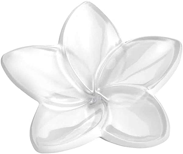 Baccarat Crystal White Bloom Flower