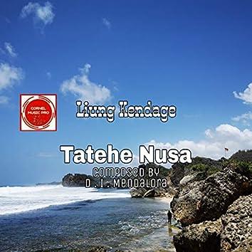 Tatehe Nusa