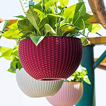 Oshi Greens Hanging Flower Pot Basket with Hook Chain for Home Gardener Grower Planter Office Balcony - 3 Pack (Assorted)
