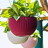 Oshi Greens 3 PCS Hanging Baskets Rattan Waven Flower Pot Plant Pot