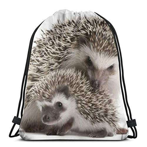 Affordable shop Hedgehog Flannel Drawstring Backpack Sport Bags Cinch Tote Bags For Traveling And Storage For Men And Women 17X14 Inch