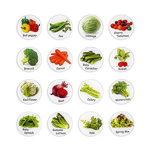 MORCART Food Magnet for Refrigerator - Kitchen Food List - Salad - Decorate Fridge Locker Whiteboard - Gifts for Children, Cooking Lovers, Mothers 16Pcs
