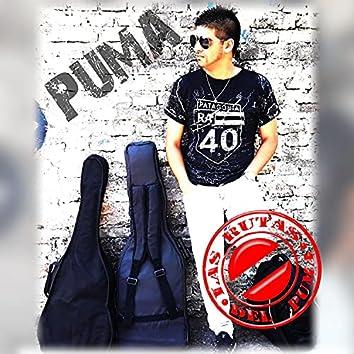 Las Rutas Del Puma