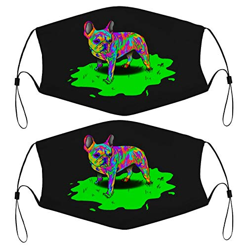 Colorful Frenchie Kids Face Mask Set of 2 with 4 Filters Washable Reusable Adjustable Black Cloth Bandanas Scarf Neck Gaiters for Adult Men Women Fashion Designs