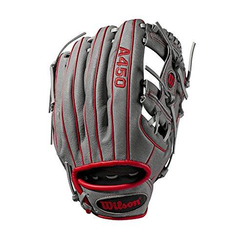 Wilson Sporting Goods 2019 A450 Baseball Glove Series